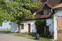 Ferienhaus Hochthanner im Frühling